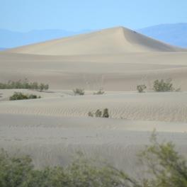 Desert- square